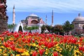 Празник на Лалето в Истанбул